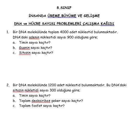 DNA Kromozom Sayısı Problemleri önizleme
