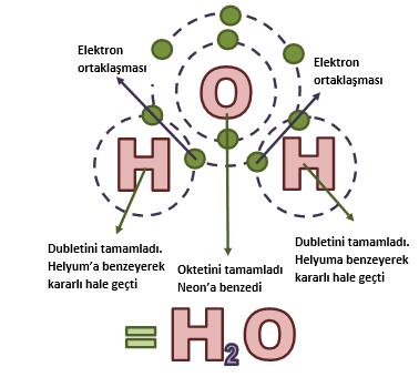 suyun-kovalent-bag-yapisi