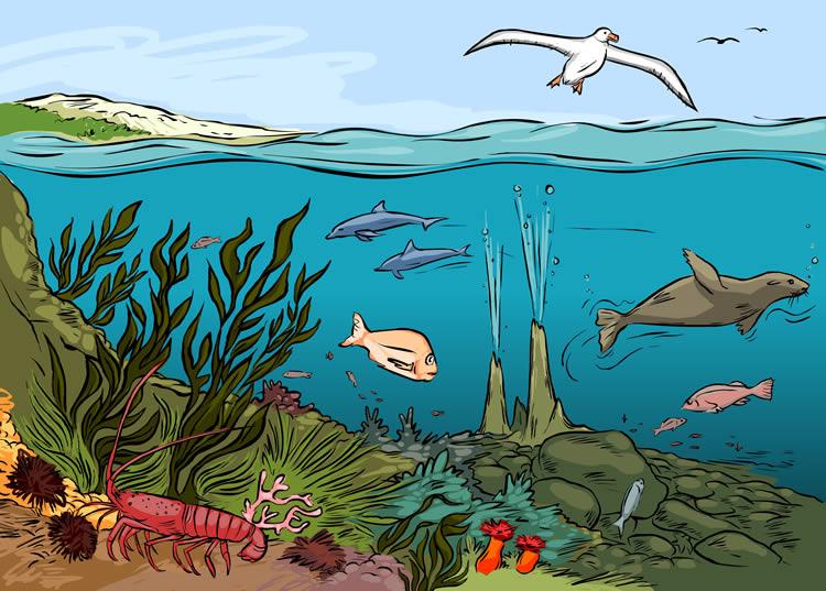 Ekosistemler
