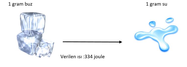 hal değişim grafiği